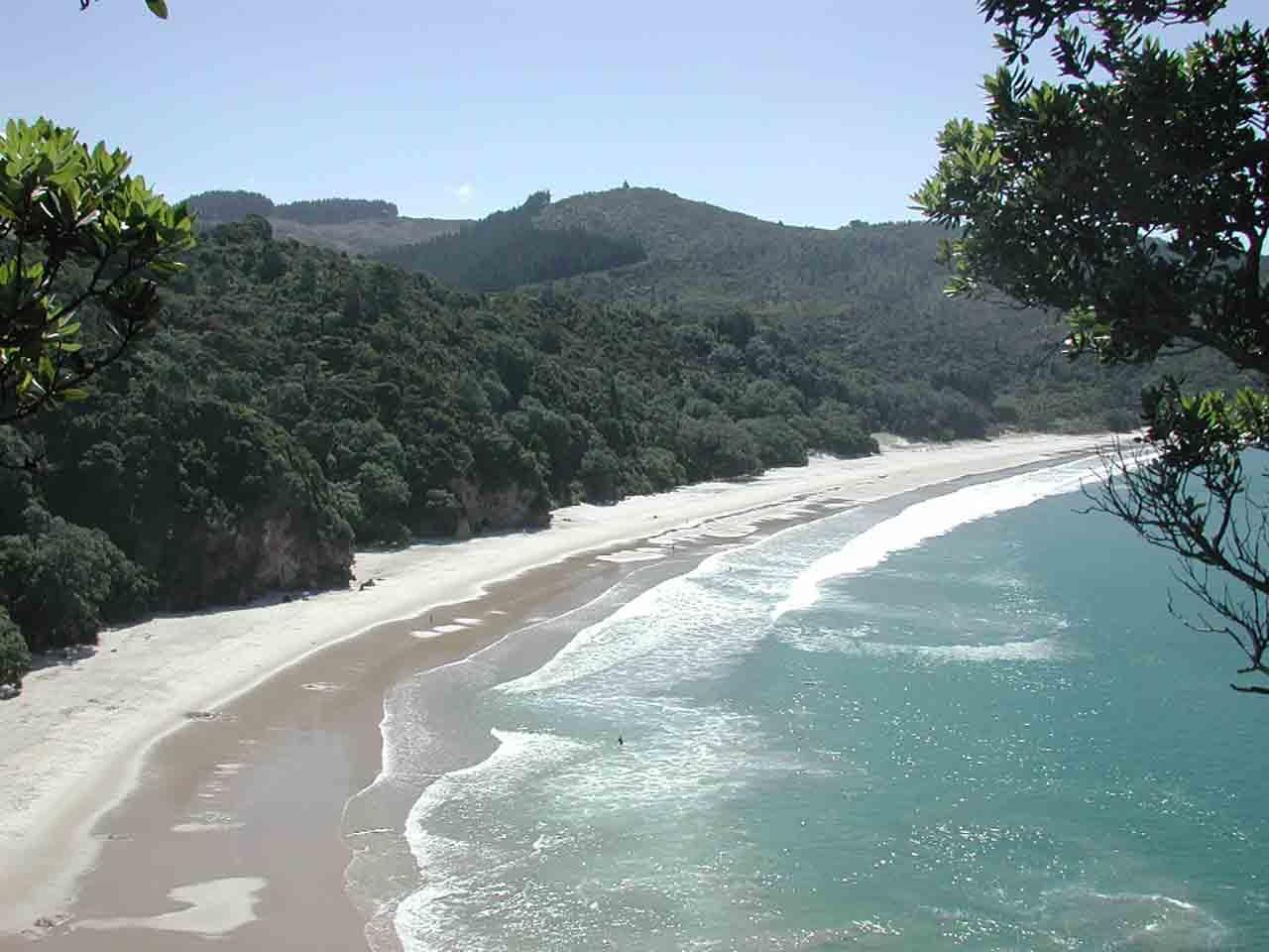 Overlooking New_Chums_Beach