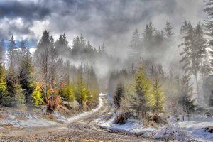 Transylvania on the Road