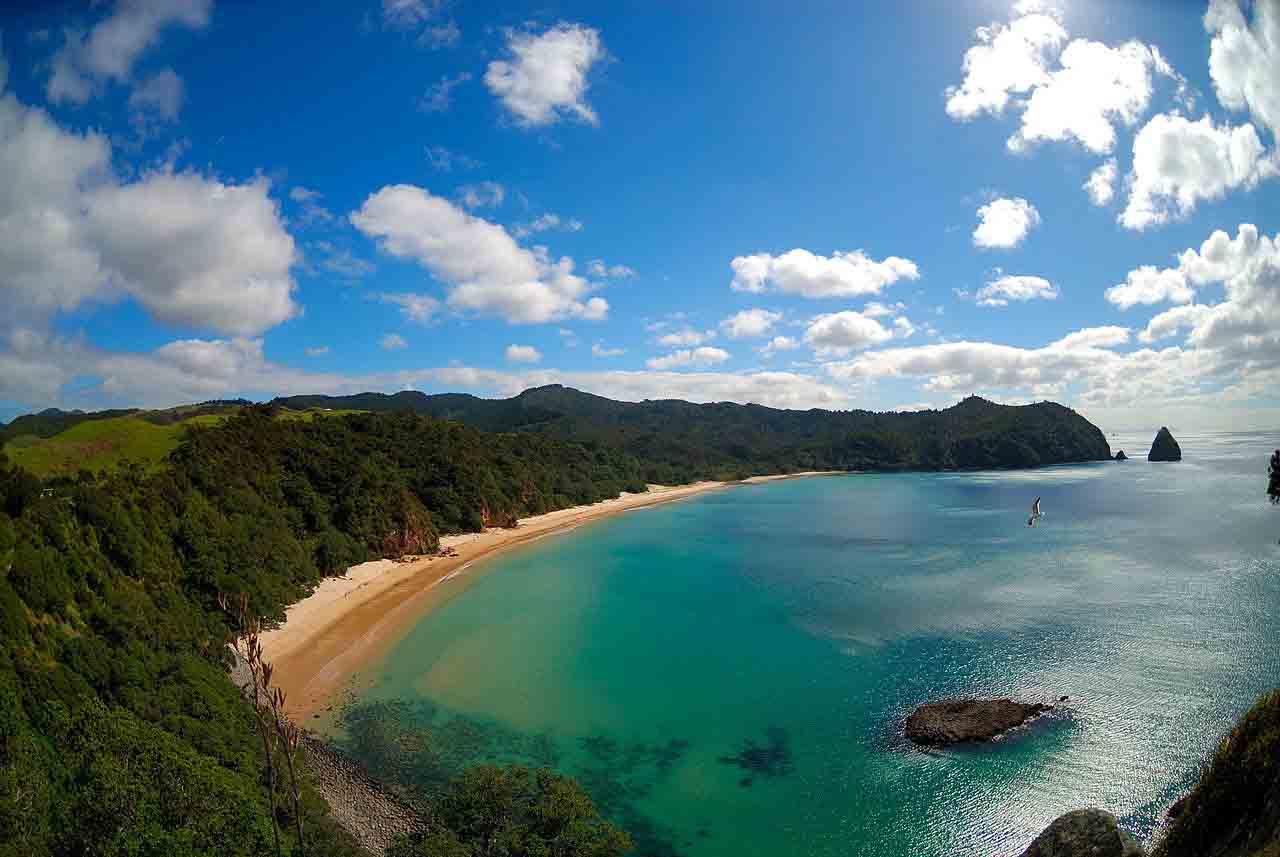 Whangapoua beach Waikato